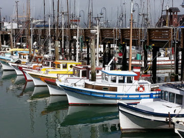Fishing trawlers in Fisherman's Wharf San Francisco