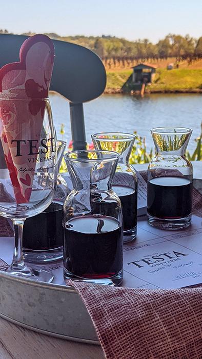 wine tastings on a tray